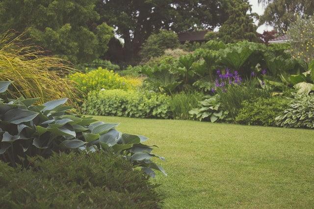garden maintenance manchester